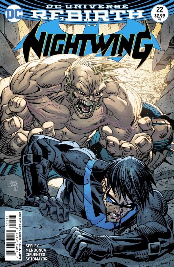 Nightwing #22