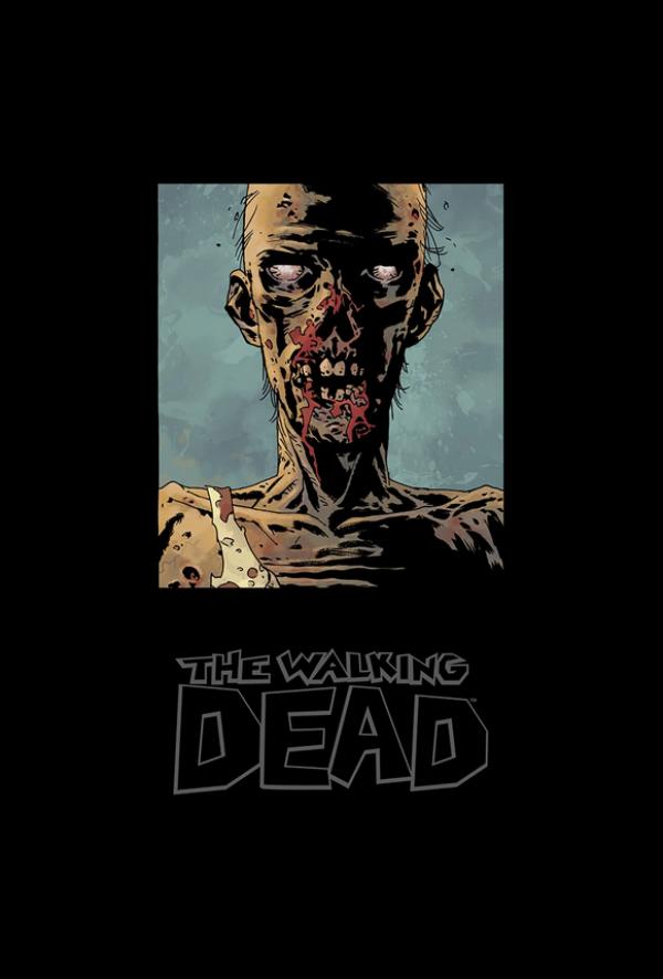 The Walking Dead Omnibus Vol. 8 HC