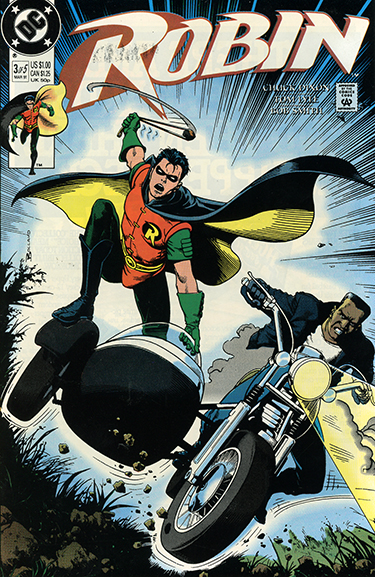 Robin #3