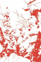 Red Sonja #17 1:35 Incentive