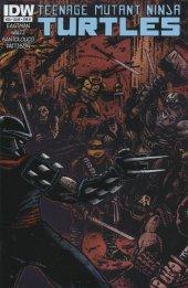 Teenage Mutant Ninja Turtles #28 Cover B Eastman