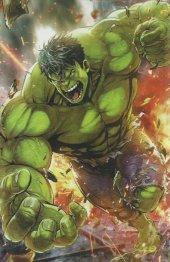 The Immortal Hulk #7 Marvel Battle Lines (Maxx Lim) Variant