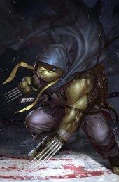 Teenage Mutant Ninja Turtles: Jennika #1 Inhyuk Lee Virgin Variant
