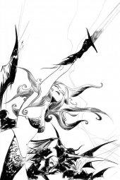Vampirella / Red Sonja #8 1:25 Incentive
