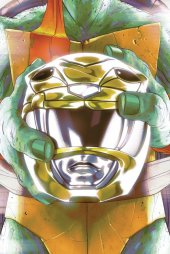 Mighty Morphin Power Rangers / Teenage Mutant Ninja Turtles #2 Cover D Montes