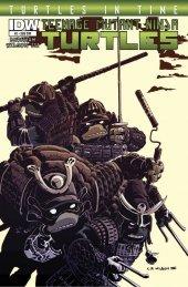 Teenage Mutant Ninja Turtles: Turtles in Time #2 Subscription Variant