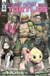 Teenage Mutant Ninja Turtles #101 1:10 Incentive Variant