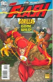 The Flash #242