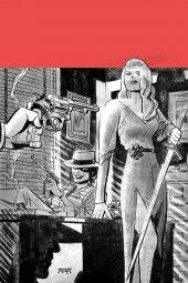 Vampirella / Red Sonja #7 1:15 Incentive
