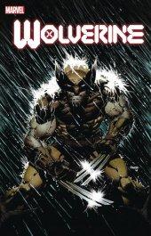Wolverine #2 1:25 David Finch Variant Edition