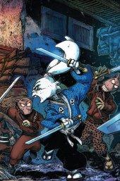 Usagi Yojimbo #6 Stan Sakai/Kevin Eastman cover