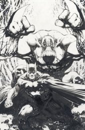 Batman / The Maxx: Arkham Dreams #1 Jim Lee NYCC Variant Cover