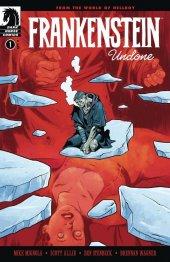 Frankenstein Undone #1 Original Cover