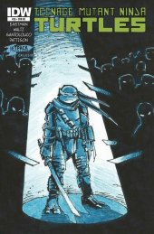 Teenage Mutant Ninja Turtles #28 Cover RE Jetpack Comics 1 Eastman