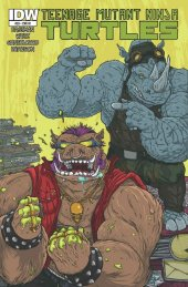 Teenage Mutant Ninja Turtles #28 Cover RI