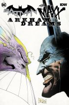Batman / The Maxx: Arkham Dreams #1 Original Cover