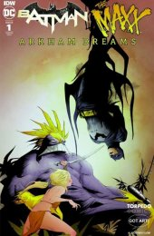 Batman / The Maxx: Arkham Dreams #1 Jae Lee Variant
