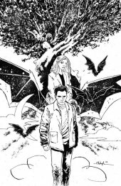 Angel & Spike #14 Cover C Bowyer