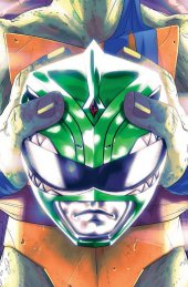Mighty Morphin Power Rangers / Teenage Mutant Ninja Turtles #2 1:25 Incentive