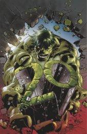 The Immortal Hulk #7 Marvel Knights 20th Anniversary - Mike Deodato Jr. Virgin Variant