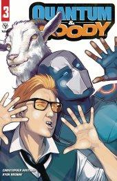 Quantum & Woody #3 Cover B Wijngaard