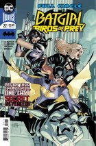 Batgirl and the Birds of Prey #22 Original Cover