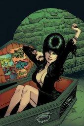 Elvira: Mistress of the Dark #12 Cover E 1:10 Cermak Virgin