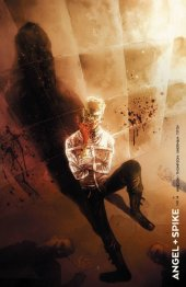 Angel & Spike #14 1:20 Templesmith Incentive Variant