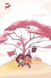 Steven Universe #16 Subscription Omac Variant