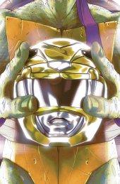 Mighty Morphin Power Rangers / Teenage Mutant Ninja Turtles #2 Cover E Monte