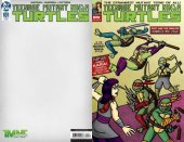Teenage Mutant Ninja Turtles #101 A Collection Exclusive By Dan Conner