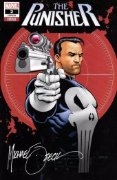 The Punisher #2 Mike zeck variant