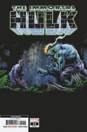 The Immortal Hulk #14 2nd Printing Hotz Variant