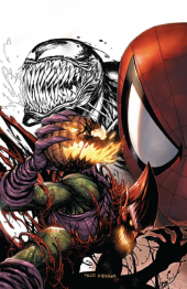 The Amazing Spider-Man #801 Tyler Kirkham Connecting Variant B