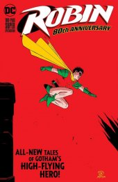 Robin 80th Anniversary 100-Page Super Spectacular #1 Original Cover