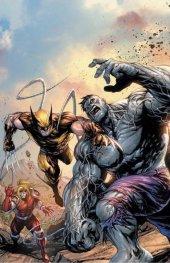 Wolverine #1 Tyler Kirkham Variant B