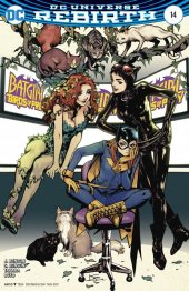 Batgirl and the Birds of Prey #14 Variant Edition