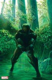 Wolverine #1 1:300 Virgin Variant Edition