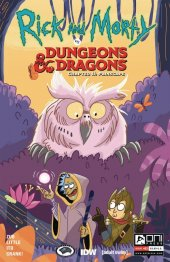 Rick and Morty vs. Dungeons & Dragons II: Painscape #3 Cover B Allant