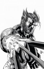 Hunt for Wolverine #1 Mike Deodato Variant B