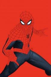 Amazing Spider-Man: Sins of Norman Osborn #1 John Tyler Christopher Variant