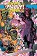History of the Marvel Universe Treasury Edition TP