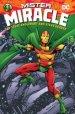 Mister Miracle by Steve Englehart and Steve Gerber HC
