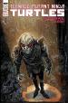 Teenage Mutant Ninja Turtles Annual 2021 #1 Cover B Eastman