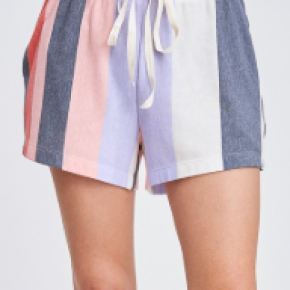 Multi Color Striped Knit Shorts