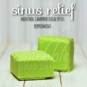 Bubble Boss Shower Steamers - 4 Scent Options
