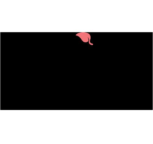 Apricot Lane - Anchorage