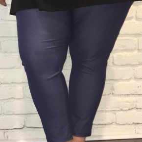 plus size stretchy jeggings