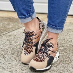 *Miami Leopard Sneaker