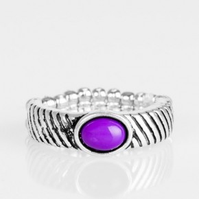 Zebra Zen Purple r57